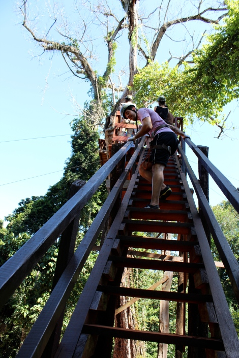 This was the ladder to the first point. It was not the most stable and looked like it had been there for a while. This girl from Germany started rocking it back and forth and I started to freak out. I decided, contrary to my previous beliefs, I would not like to live in a tree house like the Swiss Family Robinson.
